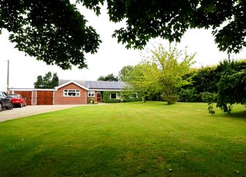 Thumbnail 4 bed detached bungalow for sale in Knapton Green, Knapton, North Walsham