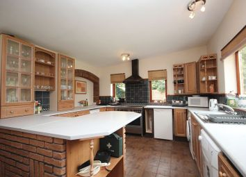 Thumbnail 5 bed detached bungalow to rent in The Green, Surlingham, Norwich