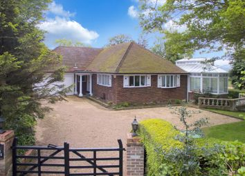 Thumbnail 3 bed detached bungalow for sale in Brede Hill, Brede, Rye