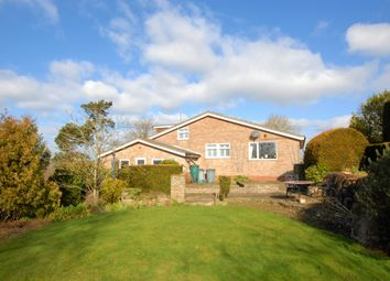 Thumbnail 4 bed detached house for sale in Bassett Gardens, Hythe