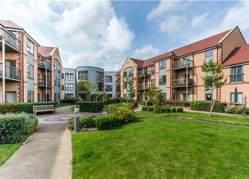 Thumbnail 1 bed property for sale in Abbeyfield, Girton, Cambridge