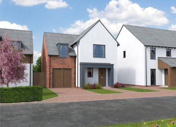 Thumbnail 3 bedroom detached house for sale in Orchard View, Kingfisher Rise, Newton St Cyres