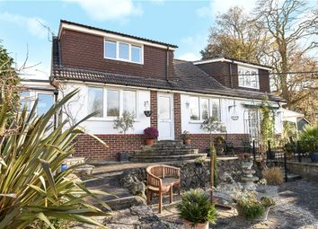 Thumbnail 5 bed detached bungalow for sale in Hillside Road, Corfe Mullen, Wimborne