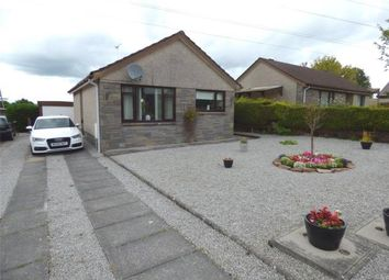 Thumbnail 2 bed detached bungalow for sale in Monro Avenue, Dumfries, Dumfries And Galloway