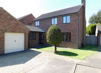 Thumbnail 4 bedroom detached house to rent in Thornemead, Werrington, Peterborough