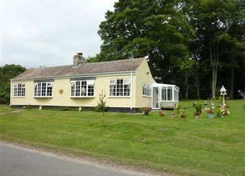 Thumbnail 3 bed detached bungalow for sale in Valley Cottage, The Avenue, East Ravendale, Near Grimsby