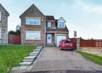 Thumbnail 4 bed detached house for sale in Ellison Meadow, Horden, Peterlee
