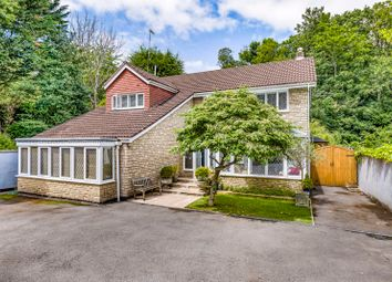 Thumbnail 4 bed detached house for sale in Old Sneed Avenue, Stoke Bishop, Bristol