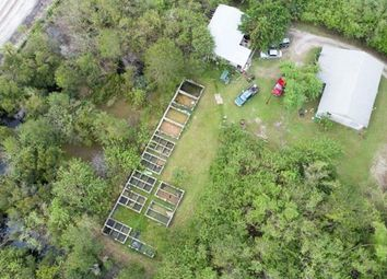 Thumbnail Land for sale in 13605 99th Street, Fellsmere, Florida, 13605, United States Of America