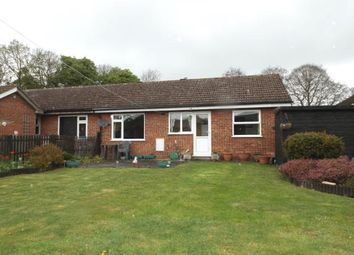 Thumbnail 2 bedroom bungalow for sale in Ashill, Thetford