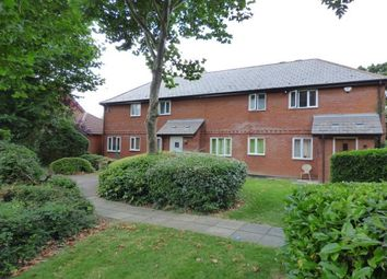 Thumbnail 1 bed property to rent in Spruce Close, Laindon, Basildon