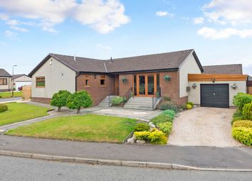 Thumbnail 4 bed detached bungalow for sale in Netherton Grove, Whitburn, Bathgate
