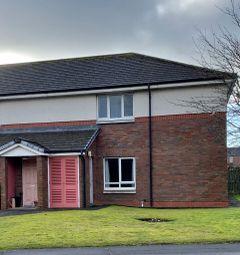2 bed flat to rent in Noble Grove, Dumfries DG1