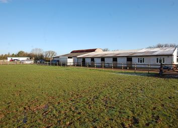 Thumbnail Equestrian property for sale in Woolverton, Bath