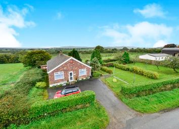 Thumbnail 3 bed detached bungalow for sale in Hillview Closworth Road, Halstock, Yeovil, Somerset