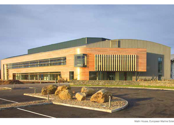 Thumbnail Office to let in European Marine Science Park, Dunstaffnage
