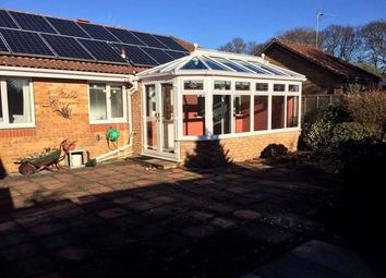 Thumbnail 2 bed bungalow to rent in Doe Copse Way, New Milton