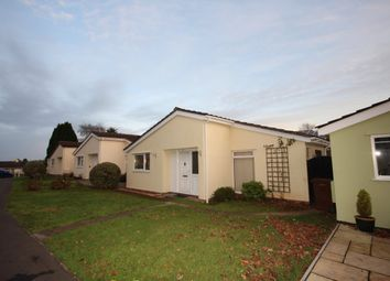 Thumbnail 2 bed bungalow to rent in Marldon Grove, Marldon, Paignton