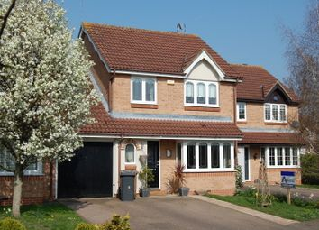 Thumbnail 4 bedroom link-detached house for sale in The Elms, Hertford