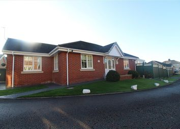 Thumbnail 2 bed bungalow to rent in Chestnut Gardens, Thornton-Cleveleys