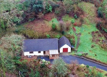 Thumbnail 4 bed detached bungalow for sale in Velindre, Llandysul