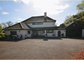 Thumbnail 5 bed property to rent in Holmwood Rise, Norwich