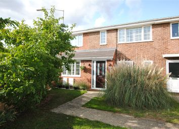Thumbnail 4 bed semi-detached house for sale in Lupin Drive, Chelmsford, Essex