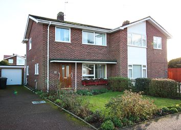 Thumbnail 3 bed semi-detached house for sale in Churchill Avenue, Newmarket
