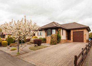 Thumbnail 3 bed bungalow for sale in William Place, Scone, Perth