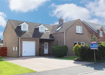 Thumbnail 4 bed detached house for sale in Oberon Grove, Steynton, Milford Haven