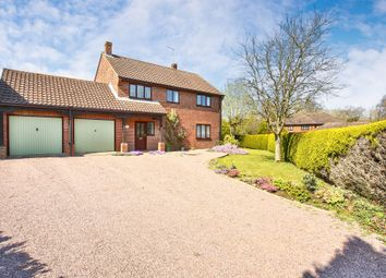 Thumbnail 4 bed detached house for sale in Richmond Close, Honingham, Norwich