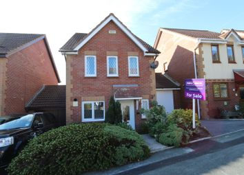 Thumbnail 3 bed link-detached house for sale in Shearwater Drive, Torquay