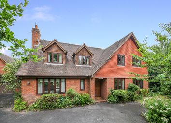 Thumbnail 4 bed detached house for sale in Mount Pleasant, Tenbury Wells