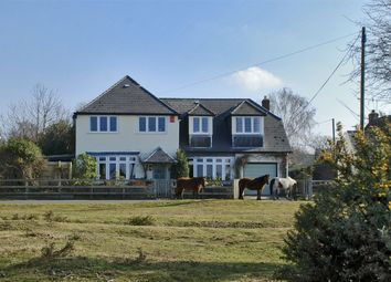 Thumbnail 5 bed detached house for sale in Main Road, East Boldre, Brockenhurst, Hampshire