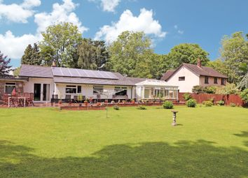 Thumbnail 4 bedroom detached bungalow for sale in Redwick, Magor, Caldicot