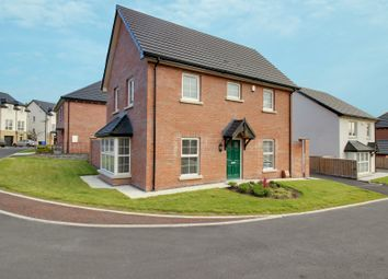 Thumbnail 3 bed detached house for sale in Blackwood Crescent, Newtownards