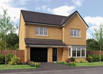 "Thumbnail 4 bedroom detached house for sale in ""Ryton"" at Backworth, Newcastle Upon Tyne"