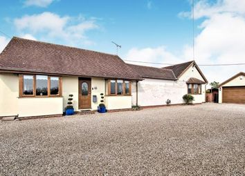 Thumbnail 3 bed bungalow for sale in Latchingdon, Chelmsford, Essex