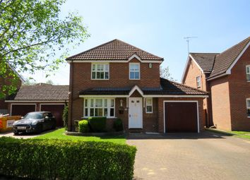 Thumbnail 4 bed detached house to rent in Harebell Close, Thetford