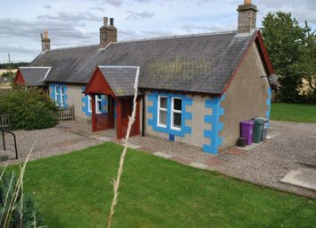Thumbnail 2 bed semi-detached house to rent in Kincreich Mill Farm, Inverarity, Angus