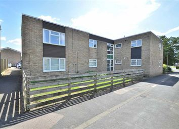 Thumbnail 2 bed flat to rent in Canterbury Way, Stevenage