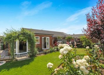 Thumbnail 2 bedroom bungalow for sale in Attleborough, Norfolk, .