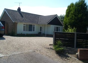 Thumbnail 3 bed detached bungalow to rent in Main Road, Theberton, Leiston