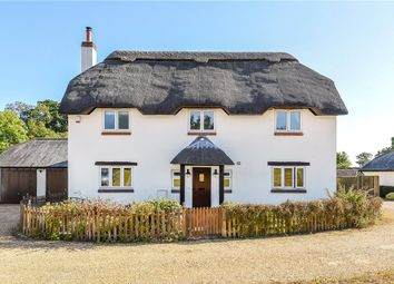 Thumbnail 4 bed detached house for sale in The Green, Bloxworth, Wareham