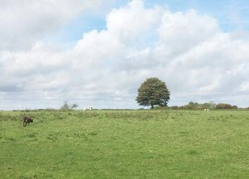 Thumbnail Land for sale in Paddock Home Farm, Arpinge, Folkestone, Kent