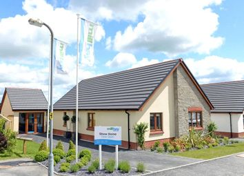 Thumbnail 3 bed detached bungalow for sale in Mill Bay Homes, The Beaufort (Plot 7), Maes Yr Ysgol, Templeton