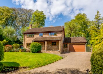 Thumbnail 4 bed detached house for sale in Great Bois Wood, Chesham Bois, Amersham