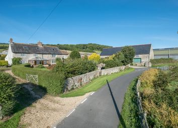 Thumbnail Farm for sale in Rew Lane, Wroxall, Isle Of Wight