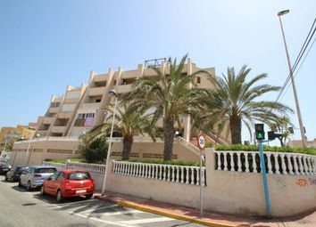 Thumbnail 1 bed apartment for sale in Torre La Mata, Torrevieja, Spain