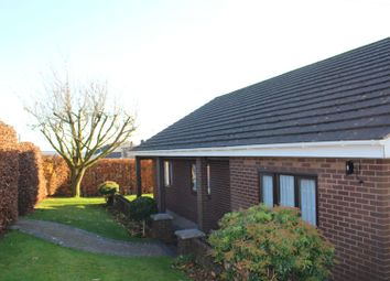 Thumbnail 4 bed detached bungalow for sale in Church Road, Llanedi